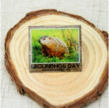 Lapel Pins for Groundhog