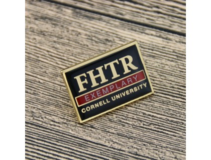 Lapel Pins for FHTR